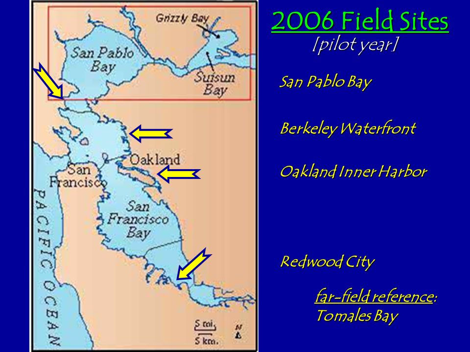 2006 Field Sites [pilot year] San Pablo Bay Berkeley Waterfront